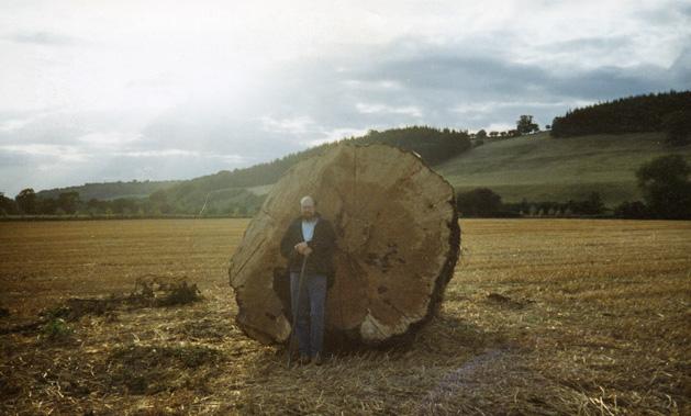 Superior Burr Oak Table